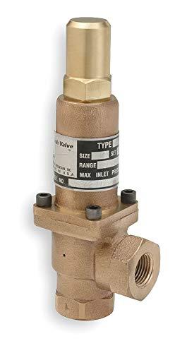 Cash Valve Bronze Adjustable Back Pressure Relief Valve FNPT Inlet Type FNPT Outlet Type - 8375-0050