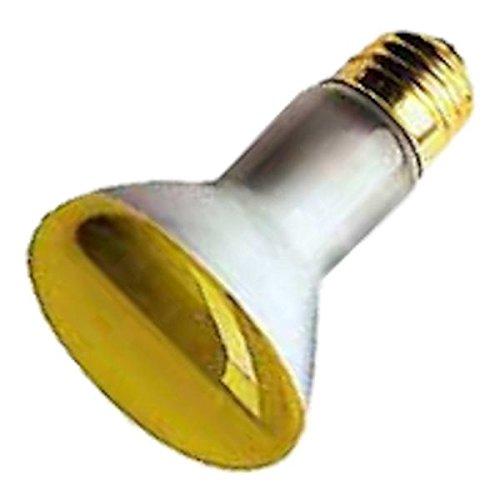 Damar 07230 - 50R20FLY 07230A Colored Flood Light Bulb