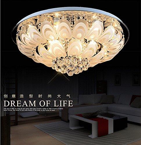 BSYY Round Crystal light led Peacock modern ceiling minimalist living room lighting dining room bedroom lamp 500 mm