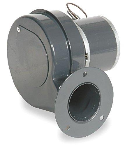 Dayton 1TDN8 PSC Blower 230 Volt