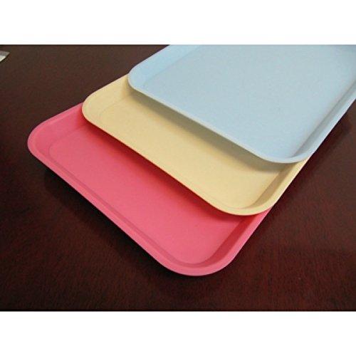 1 PC Beige Dental Instrument Tray Size B Trays 1325 x 975 Plastic