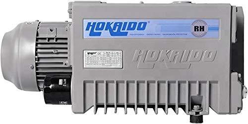 Hokaido Vacuum Technology RH0100 RH Series Oil-Lubricated Rotary Vane Vacuum Pump 50 Hz 200-240V345-415V Motor G 125 Connection 5886 CFM