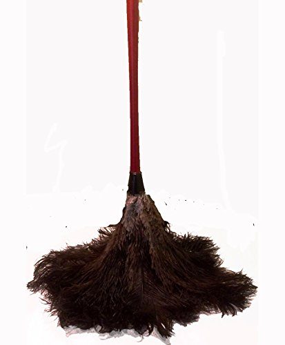 AAYU Brand Longest Premium Professional Feather Duster  Natural Duster for Cleaning and Feather Moping  Genuine Ostrich Feather Duster with Wooden Handle  Eco-Friendly  Easy to Clean Dust 60 cm