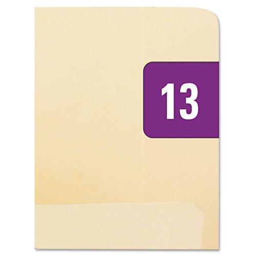 Smead Year 2013 End Tab Folder Labels 12 x 1 PurpleWhite 250 LabelsPack