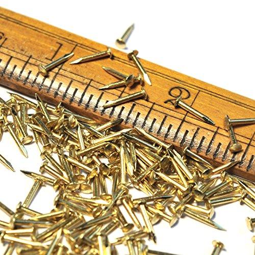 Brass Small Tack Nails Escutcheon Pins 250pcs - 8mm 516 long 10mm G18 diameter