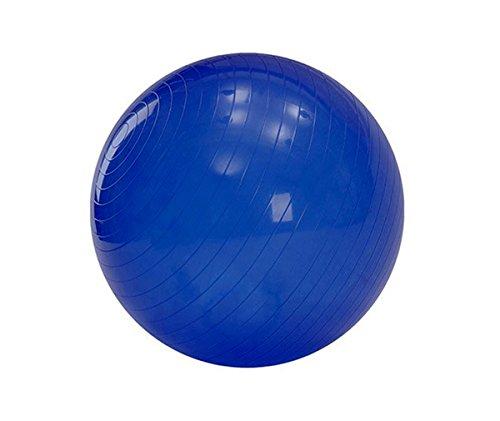 55 cm VinylPVC Balance Stability Ball for Yoga Strength Core Balance Stability